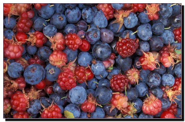 Фруктово–ягодная диета